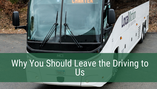 Why You Should Leave the Driving to Us